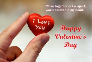 valentines day funny quotes & saying