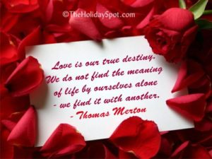 Funny Quotes for Valentines Day 2020