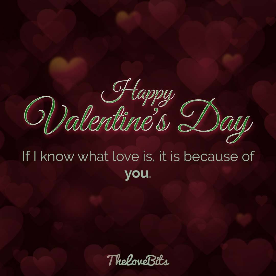 Valentines Cute Quotes for Valentines Day 2020